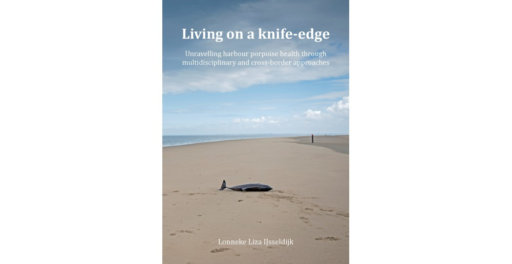 Living on a knife-edge Unravelling harbour porpoise health through multidisciplinary and cross-border approaches