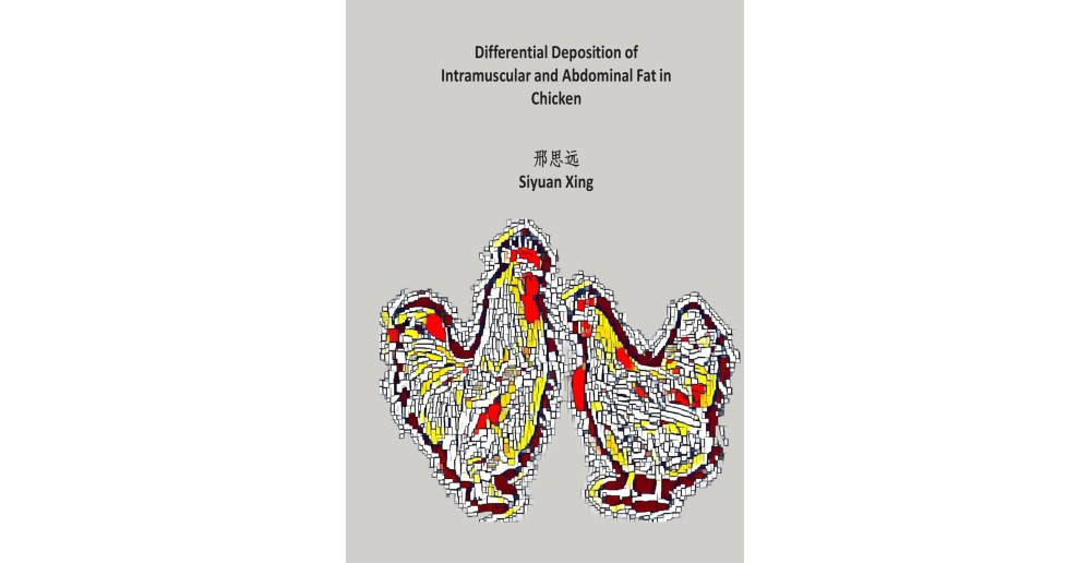 Differential Deposition of Intramuscular and Abdominal Fat in Chicken