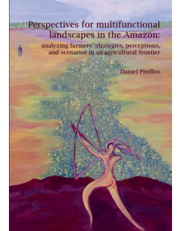 Perspectives for multifunctional landscapes in the Amazon: analyzing farmers' strategies, perceptions, and scenarios in an agricultural frontier