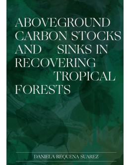 Aboveground carbon stocks and sinks in recovering tropical forests