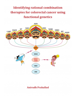 Identifying rational combination therapies for colorectal cancer using functional genetics