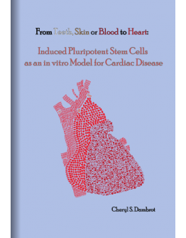 From Teeth, Skin, Blood to HeartInduced Pluripotent Stem Cells as an in vitro Model for Cardiac Disease