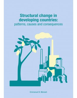 Structural change in developing countries: Patterns, causes and consequences