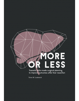 More or Less. Towards tailor-made surgical planning to improve outcomes after liver resection